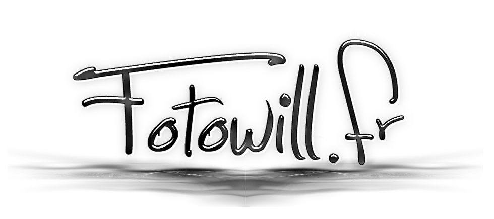 fotowill
